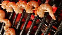Shrimpbarb